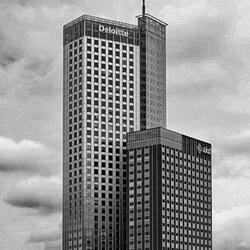 Rotterdam 12.