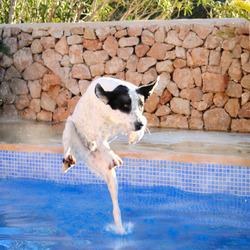 Running over Water
