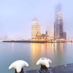 Fog in the City!