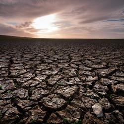Mudflats Peasens