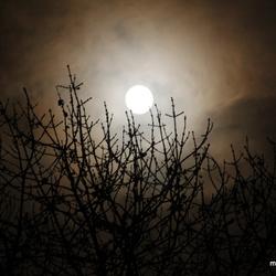 Trots tot aan de maan en weer terug