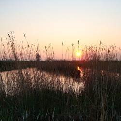 zonsopgang Magdalenapolder