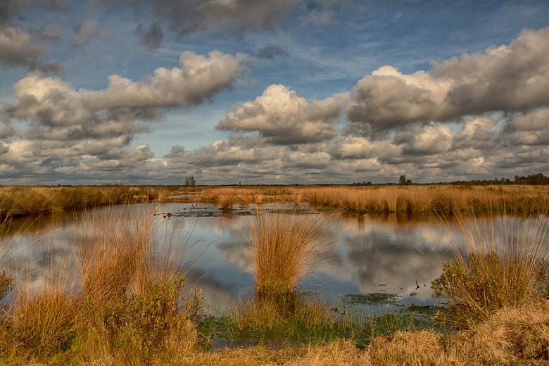 Engberstdijksvenen - Afgelopen zondagochten was het prachtig in de Engbertsdijksvenen een prachtig hoogveengebied op 5 km van mijn huis.<br /> <br />