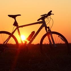 Love for Biking