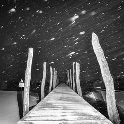 Sneeuw in zeewolde