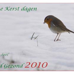 Kerst & Nieuwjaar boodschap!