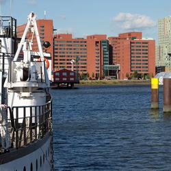 Rotterdam, Rijnhaven