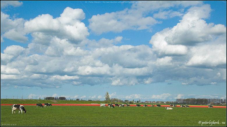Groeten Uit Holland.Groeten Uit Holland Natuur Foto Van Compumess Zoom Nl