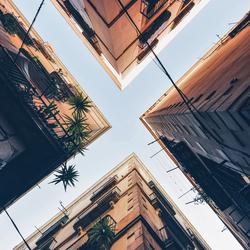 Barcelona lookup
