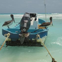 vis liefhebbers op de boot