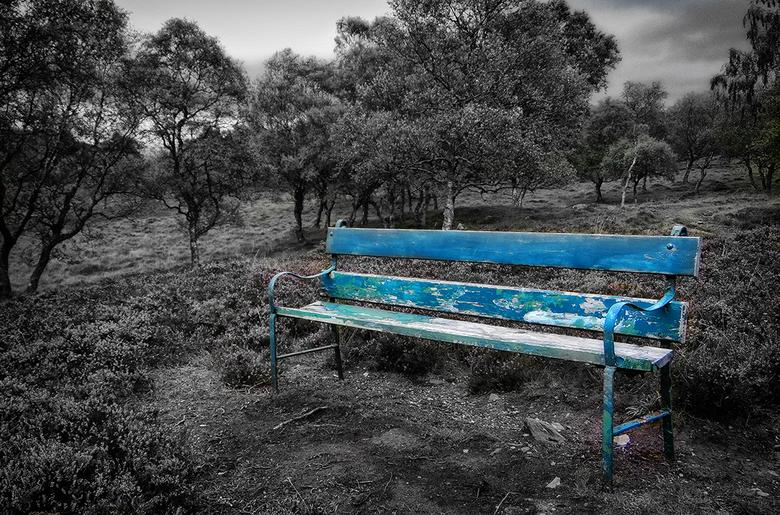Bench....... -
