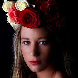 Deetail roses