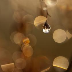 druppels in kerstsfeer -5-