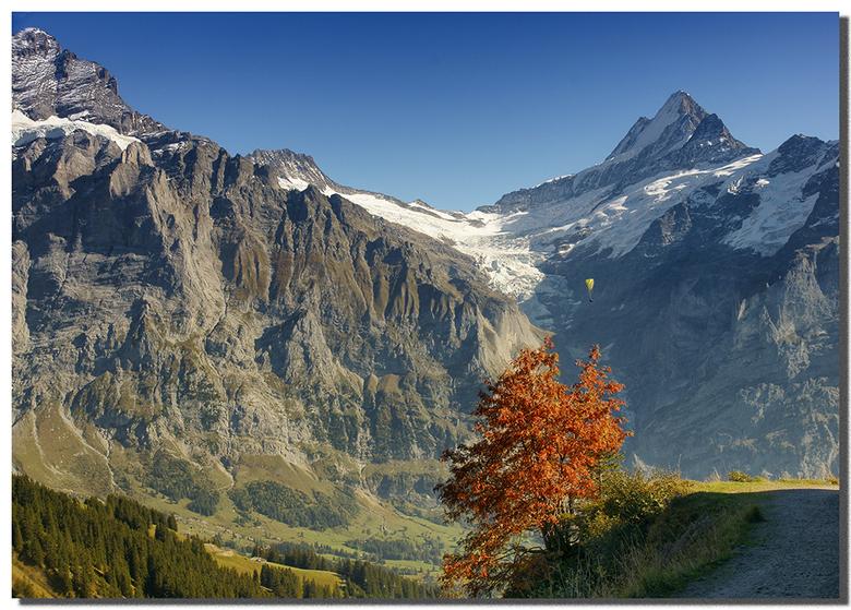 Tussen Schreck- en Wetterhorn - Het moet geweldig zijn om hangende aan een parapent (geloof ik) zo van boven op de bergen en het gekrioel daar beneden