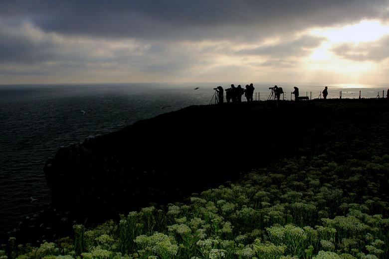 Helgoland, de die-hard fotografen gaan door! - Je hoeft natuurlijk niet alleen vogels te fotograferen op Helgoland. 't Is er verder ook zeer mooi