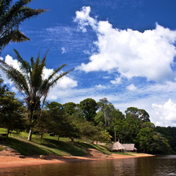 Suriname, Babunhol