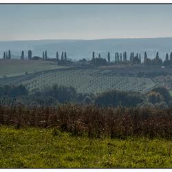 panorama 5* landschap in ons eigen landje