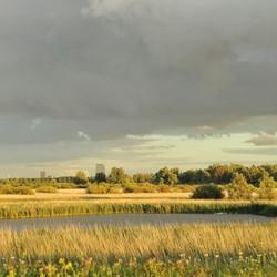 Zomer 2017 Almere