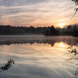 Silent Sunrise Oisterwijkse Bossen en Vennen