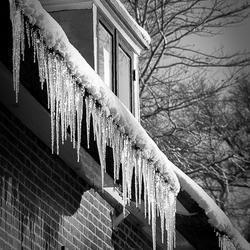 Winter bij Rosendaal (2)