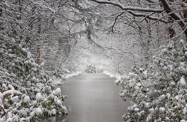Hollandse Winter - Hollandse Winter