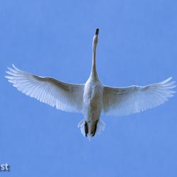 20140401-De luchtmacht