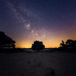 Dutch Milky Way