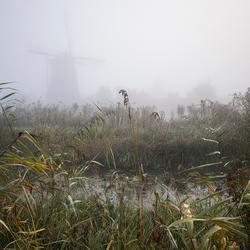 misty........