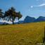 Dolomites-8-Seiser-Alm
