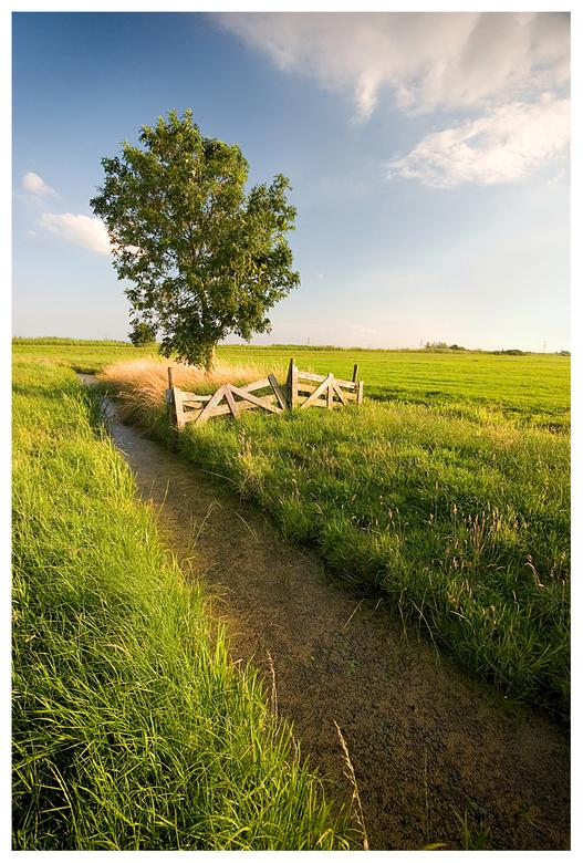 Polder Alblasserwaard - Stukje polder in de Alblasserwaard
