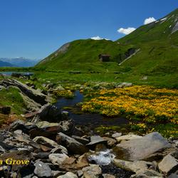 Berglandschap bij Col du petit Saint Bernard
