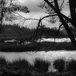 A view on a lake
