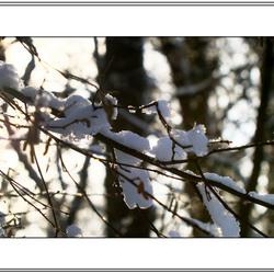 Winter landschap 2