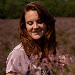 Daisy in Lavendel