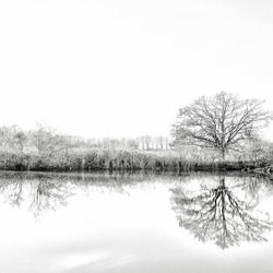 Refelections