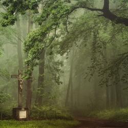 Sacred Ground.