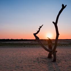 Zonsondergang bij de Loonse en Dunense Duinen