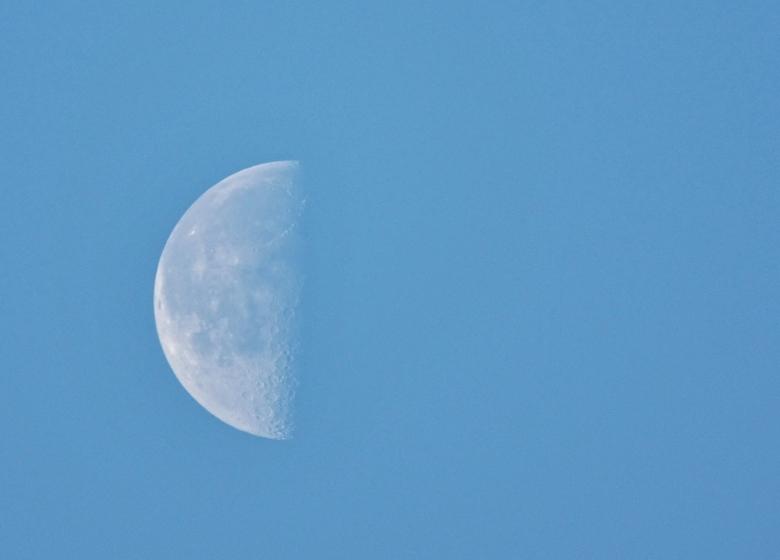 Maan overdag - 's morgens vroeg de maan