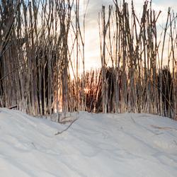 Een zomerse foto kan winters lijken!
