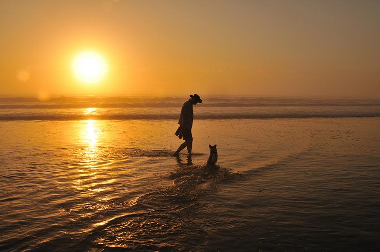 Mijn man, mijn hond en een zwoele zomeravond - Mijn man, mijn hond en een zwoele zomeravond