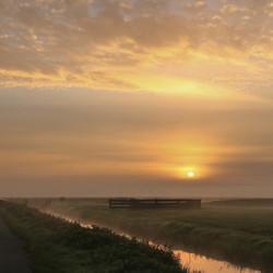 ochtend licht