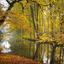 Autumn Elswout