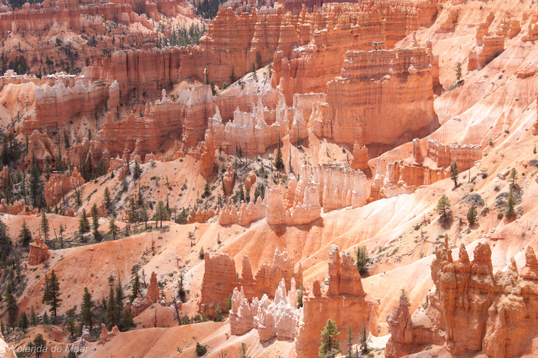Bryce Canyon National Park - Bryce Canyon NP is één van de mooiste canyons van Amerika door zijn unieke geologische rotsformaties. <br /> Door erosie