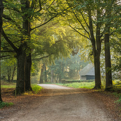 Mooie Natuur in De Goorstraat Goirle NB NL