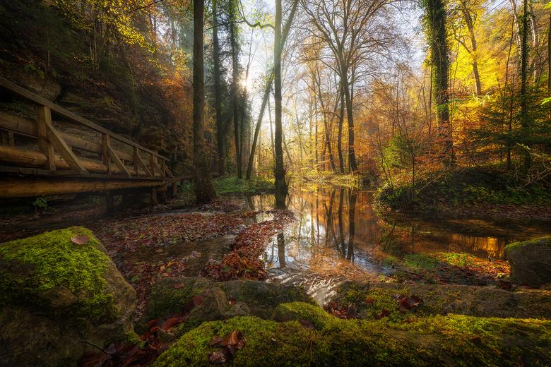 Sprookjesachtig Mullertal - Een geweldige atmosfeer in het sproojesachtige bos Mullertal in Luxemburg.