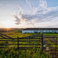 great glen cattle ranch by carina meijer