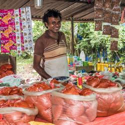 kraam met kruiden Sri Lanka