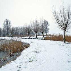 Sneeuw februari 2017 061_nieuw4