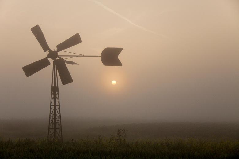 Bosmanmolentje in de mist - Mist, tegenlicht en zo'n mooi Bosmanmolentje, in de Hoekschewaard gefotografeerd.