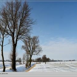 Kollum... sneeuw en zeer koud